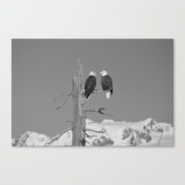 Perched With A View Duo - B & W Canvas Print