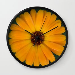 Marigold flower 4 Wall Clock