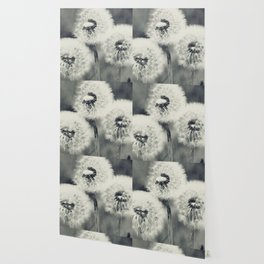 Dandelions Wallpaper