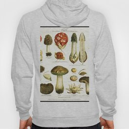 Mushrooms Hoody