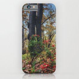 Is it autumn or is it spring? iPhone Case