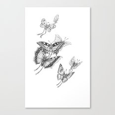 Fly Butterflies Fly Canvas Print