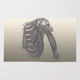 Anatomy 2 Rug