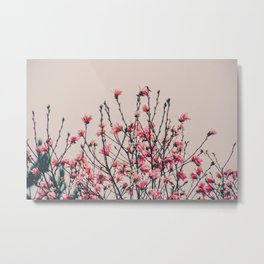 Paper magnolia Metal Print