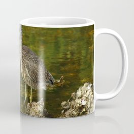 Juvenile Yellow Crowned Night Heron Coffee Mug