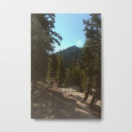 Forests of Sequoia Metal Print