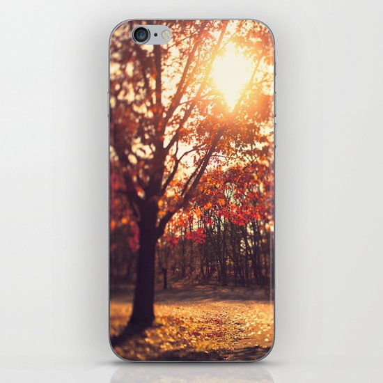 Autumn Sun  iPhone & iPod Skin