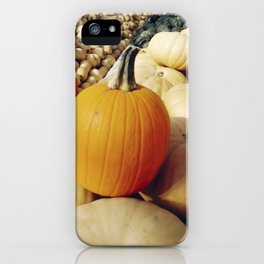 Freshly picked assortment of fall pumpkins and squash iPhone Case