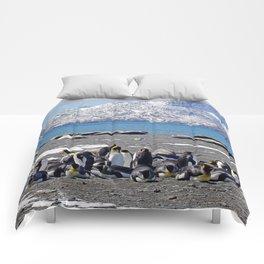 King Penguins and Fur Seals Comforters