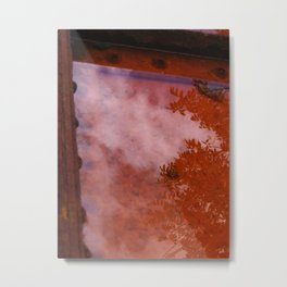 Reflection Pool Metal Print