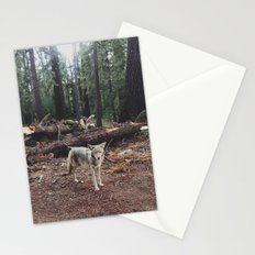 Injured Coyote Stationery Cards