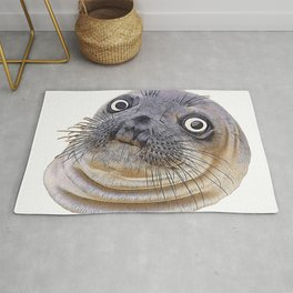 Seal Face Funny Pinnipeds Afraid Mistake Caught Act Rug
