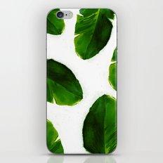 Banana Leaves iPhone & iPod Skin