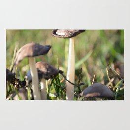 macro mushroom Rug