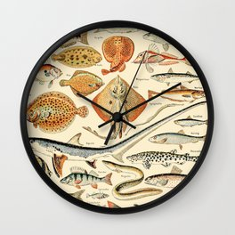 Vintage Fishing Diagram // Poissons by Adolphe Millot XL 19th Century Science Textbook Artwork Wall Clock