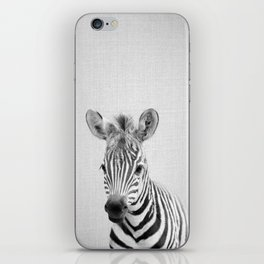 Baby Zebra - Black & White iPhone Skin