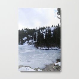 Bear Lake II Metal Print