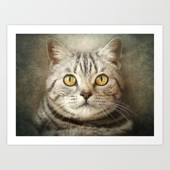 Tabby Cat Art Print