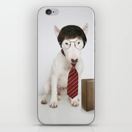 Accountant iPhone Skin