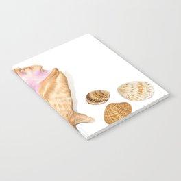 Seashells 01 Notebook