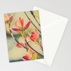 Vintage Red Dogwood Tree Flowers in Spring Warm Sunny Botanical Stationery Cards