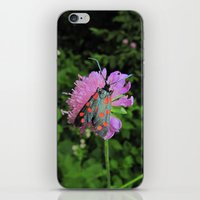 moth iPhone & iPod Skins featuring moth by giol's