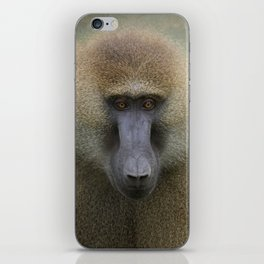 Guinea Baboon iPhone Skin