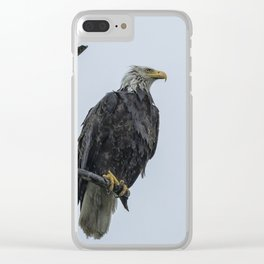 Drenched Eagle Clear iPhone Case