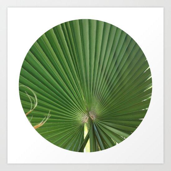 Palm Frond (circle week) Art Print