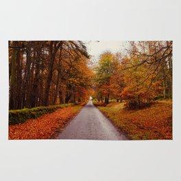 Autumn Road II Rug