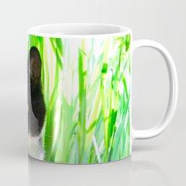 Orazio and the princess frog Coffee Mug