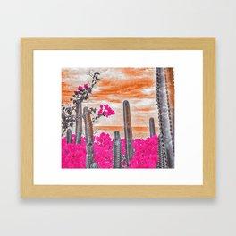 Cactus Sunset Framed Art Print