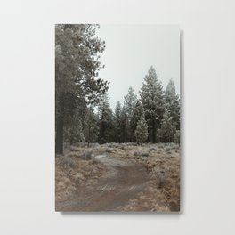A Walk Through the Trees Metal Print