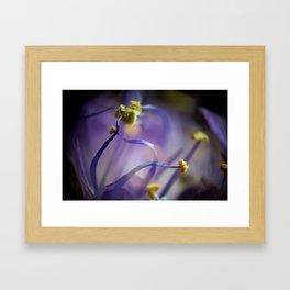 Purple and Yellow  Framed Art Print