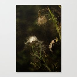 Enigma No. 2 Canvas Print