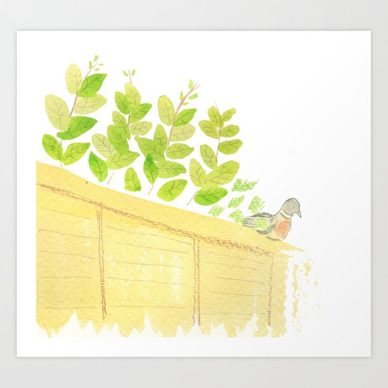 Pigeon in garden Art Print