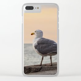 Sea gull and windjammer Clear iPhone Case