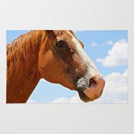 Equine Spirit Rug