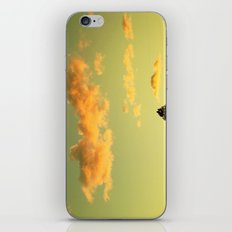 Skocean iPhone & iPod Skin