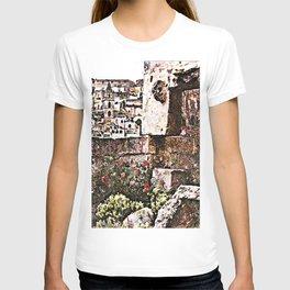 Sassi di Matera: stones and flowers T-shirt