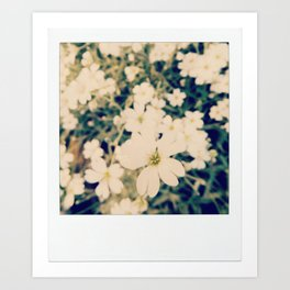 in the softness of white Art Print