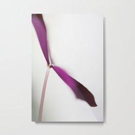 Flower Series - Beautiful Ones-13 Metal Print