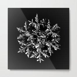 Snowflake vector - Gardeners dream black Metal Print