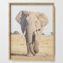 African Elephant - Wildlife Serving Tray