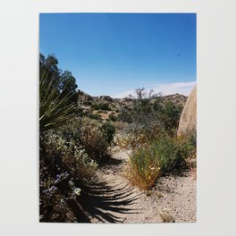 The Lushness of Joshua Tree Poster