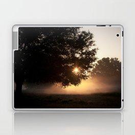 sunrise through the live oak Laptop & iPad Skin