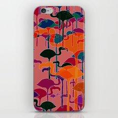multicoloured flamingos iPhone & iPod Skin