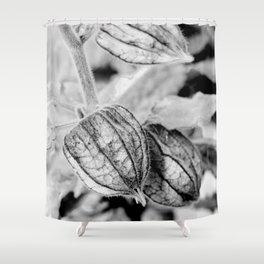 Physalis angulata Shower Curtain