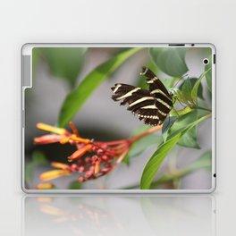 Zebra Longwing on a Firebush flower Laptop & iPad Skin