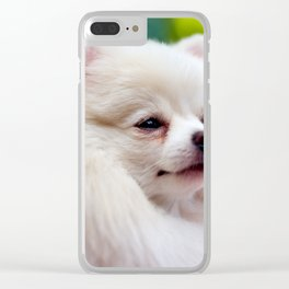 Pomerian Clear iPhone Case